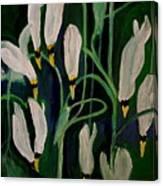 Spring Ballet Canvas Print