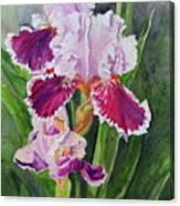 Spring Blooms Canvas Print