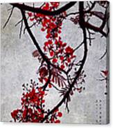 Spring Bloosom In Maldives. Flamboyant Tree II. Japanese Style Canvas Print