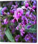 Spring Blossom 2 Canvas Print
