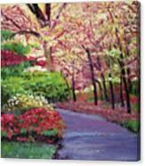 Spring Blossoms Impressions Canvas Print
