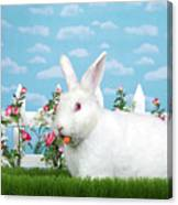 Spring Bunny Loves His Carrots Canvas Print