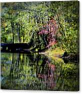 Spring Colors Canvas Print