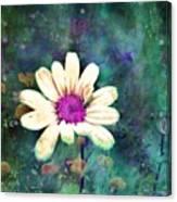 Spring Daydreams Canvas Print