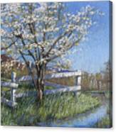 Spring Fare Canvas Print