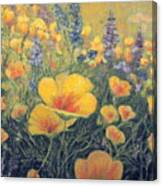 Spring Field Of Flowers Canvas Print