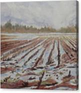 Spring Flood Canvas Print