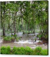 Spring Floodwaters. Altai Canvas Print