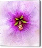 Spring Flower Frill Canvas Print