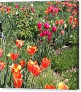 Spring Flowers In A Garden Canvas Print