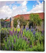 Spring Flowers In The Carmel Mission Garden Canvas Print