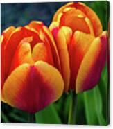 Spring Garden - Act One Canvas Print