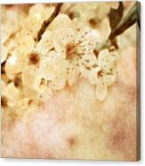 Spring Glory 2 Canvas Print