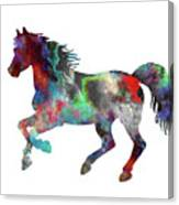 Spring Horse 2 Canvas Print