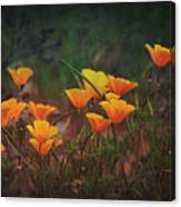 Spring In A Poppin' Canvas Print