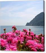 Spring In Cinque Terre Canvas Print