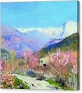 Spring In Italy Canvas Print