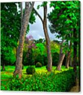 Spring In Madrid Canvas Print