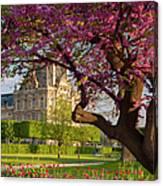 Spring In The Garden Canvas Print