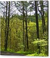 Spring In The Gorge Canvas Print