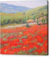 Spring In Tuscany Canvas Print