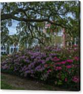 Spring In White Point Gardens Canvas Print