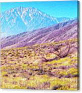Spring In Whitewater Canyon Canvas Print