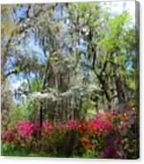 Spring Is All Over Canvas Print