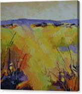 Spring Karoo Canvas Print