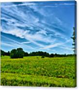 Spring Landscape In Nh Canvas Print