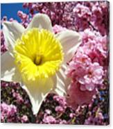 Spring Landscape Pink Tree Blossoms Yellow Daffodils Baslee Troutman Canvas Print