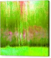 Spring Light Canvas Print