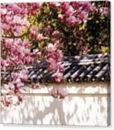 Spring - Magnolia Canvas Print