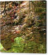 Spring Maple Leaves Over Japanese Garden Pond Canvas Print