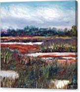 Spring Marsh Canvas Print