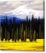 Spring Meadow Mount Brokeoff Canvas Print