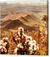 Spring Mountain Blossoms Canvas Print