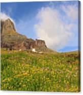 Spring Mountain Canvas Print
