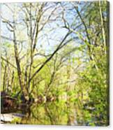 Spring On A Pennsylvania Stream, Fairmount Park, Philadelphia Canvas Print