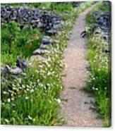 Spring Path/loving Canvas Print