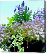 Spring Planter Canvas Print