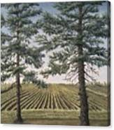 Spring Planting  Canvas Print