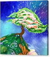 Spring Pods Canvas Print