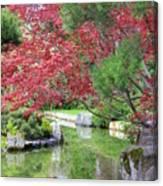 Spring Pond Reflection Canvas Print
