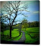 Spring Road Canvas Print