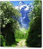 Spring Road To Mountains Canvas Print