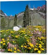 Spring Rocky Mountain Landscape Canvas Print