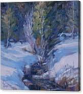Spring Runoff Canvas Print