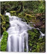 Spring Season Cascade Canvas Print