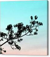 Spring Silhouette Canvas Print
